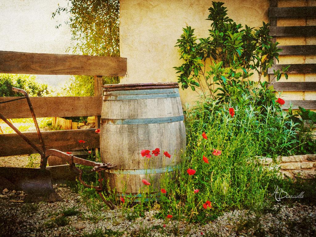 Photo Collection Provence France Desktop Wallpaper