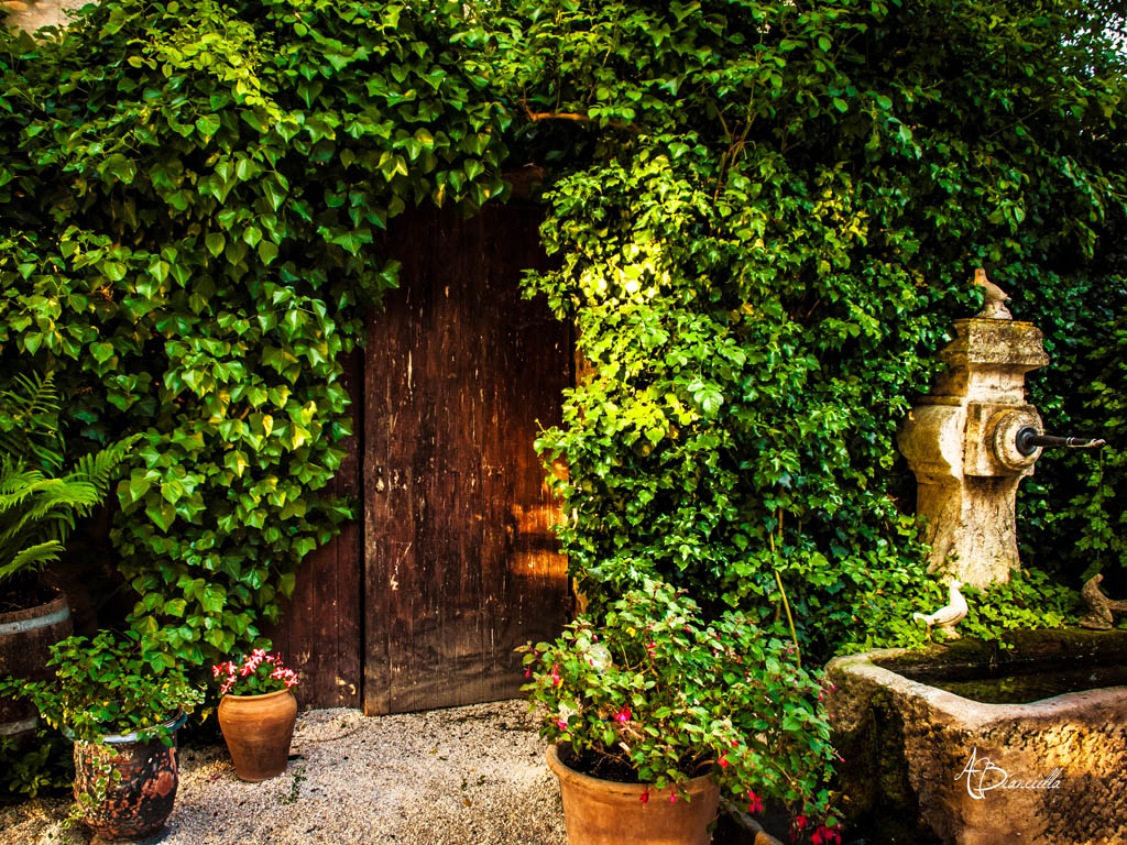 Anthony Bianciella - Lifestyle photographer - Wallpaper for French Countryside Wallpaper  584dqh