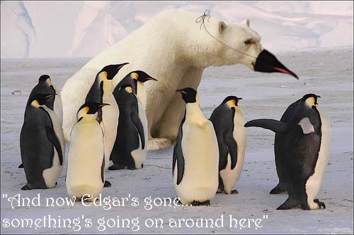 penguins.jpg. Source. I think this is too funny.