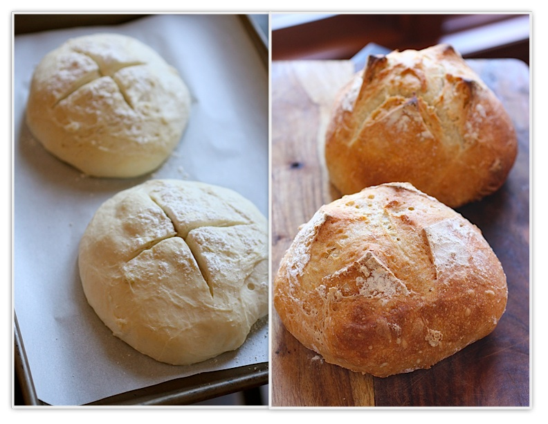 Quick easy no knead bread recipes