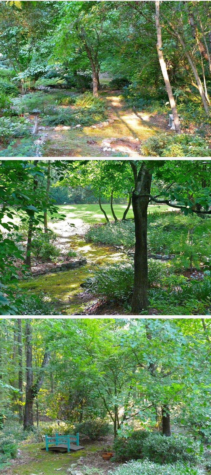 summer garden paths debs garden debs garden blog