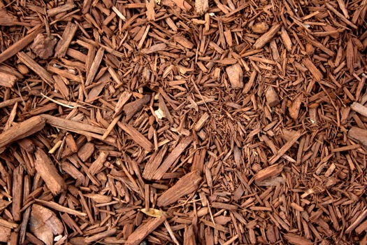 Wood Chip Uses ~ Beneficial mulching and types of mulch you should never