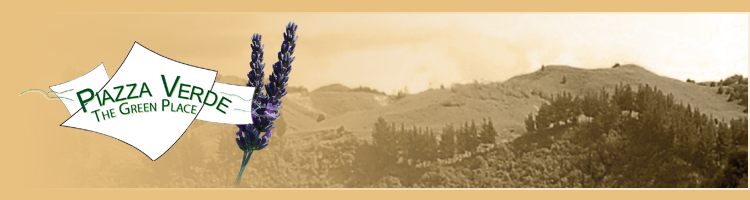 New Zealand Lavender Farm