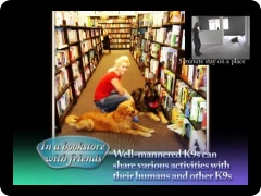 Canine Good Manners DOGumentary:rehabilitating and training a foster dog (now adopted)