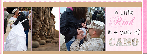 Banner image for the blog 'A Little Pink in a World of Camo.'