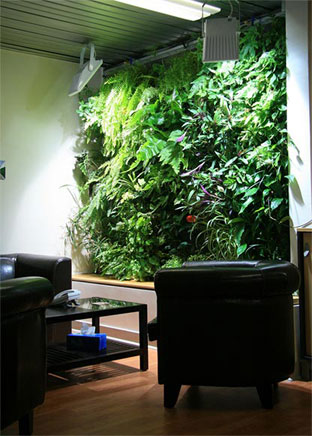 Vertical wall planting