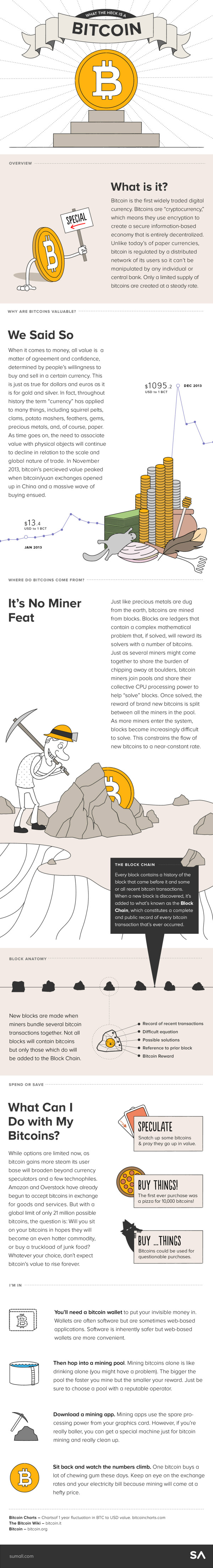 What the Heck is a Bitcoin infographic