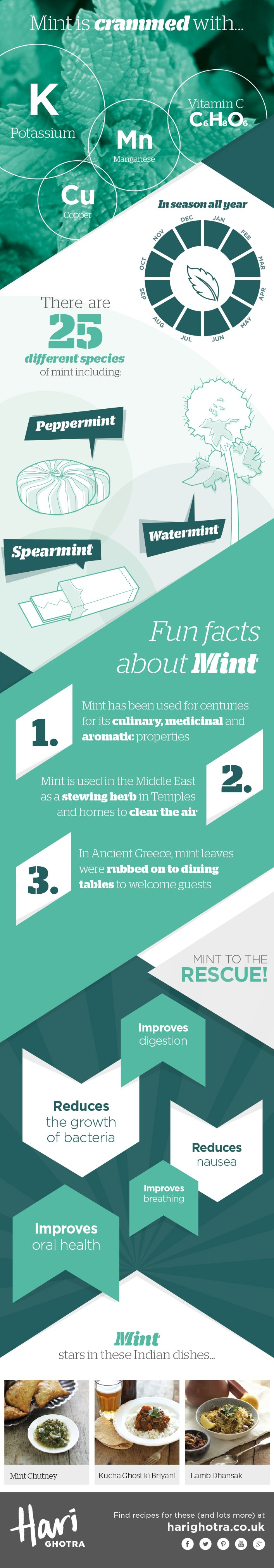 Chef Hari Ghotra's Key Ingredients Infographics Mint