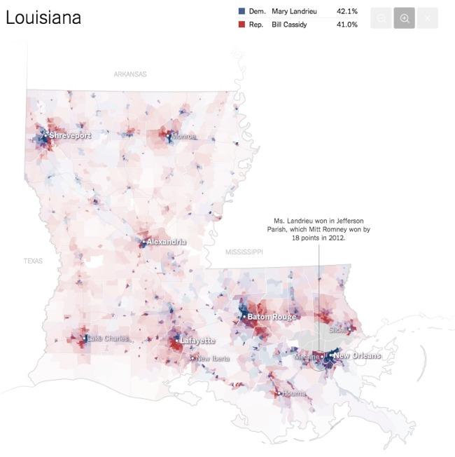 The Most Detailed Maps from the Midterm Elections Louisiana Infographic