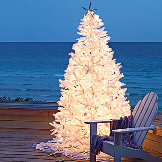 Coastal Living Outdoor Christmas Trees at Home Infatuation Blog