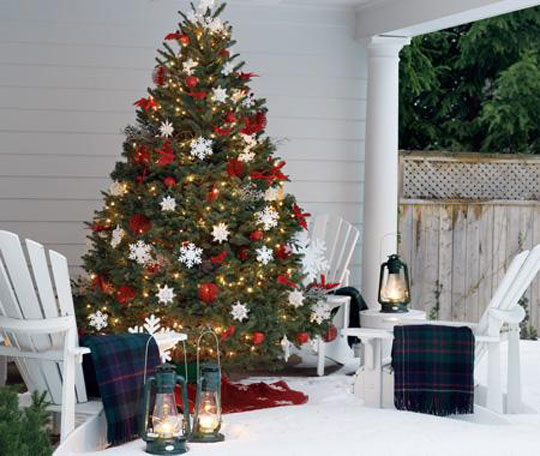 House and Home Outdoor Christmas Trees at Home Infatuation Blog