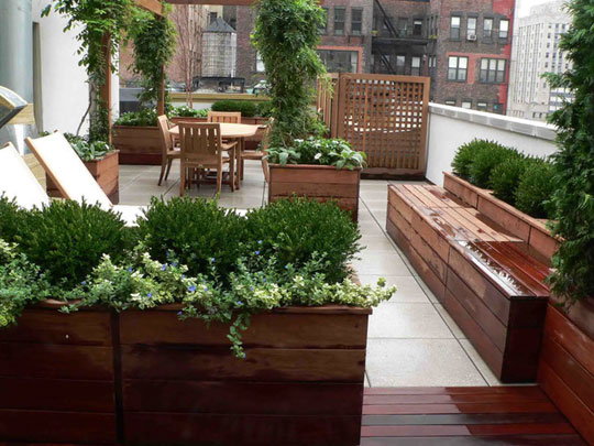 Before after don statham 39 s rooftop terrace garden in for Rooftop patio garden ideas