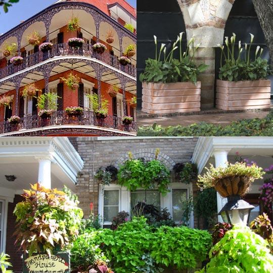Sarah Kinbar Good Garden Ideas Blog Balcony Planters At Home Infatuation Blog