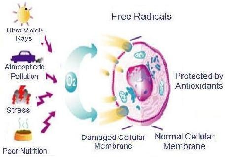 how to create oxygen free radical