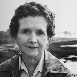 contribution rachel carson The story of every environmental movement start with rachel carson her book silent spring and her many contributions to keep the environment save from chemicals make.