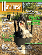 havanesebreedmagazine