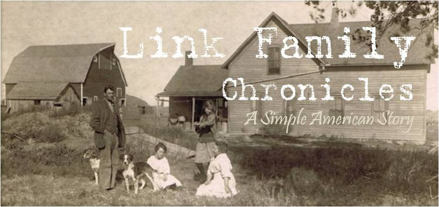 Link Family Chronicles