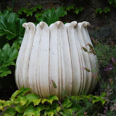 A unique pot in Marin