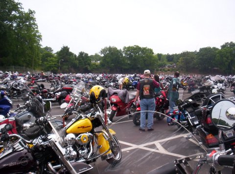 honda hoot parking lot full two.jpg