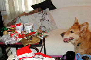 rudy_watching_presents.jpg