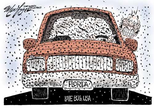 Car Wash Locations Tallahassee