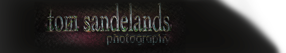 Tom Sandelands Photography