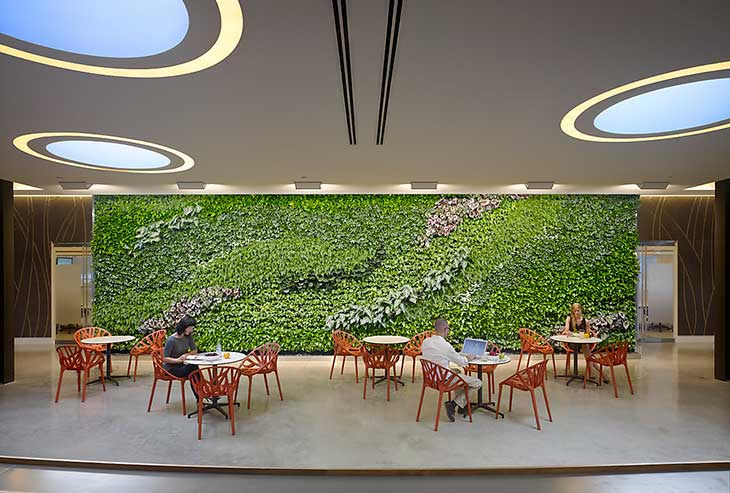 Biophilic Design Why Nature Matters