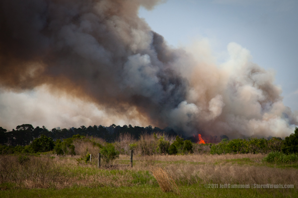 Strong winds spread large wildfire.