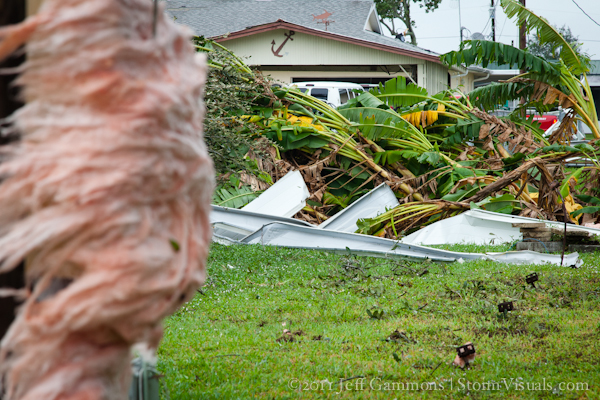 Tornado damage trees