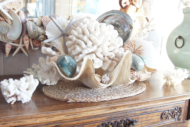 Sue murphy designs life as a house decorating with sea - How to decorate with seashells ...