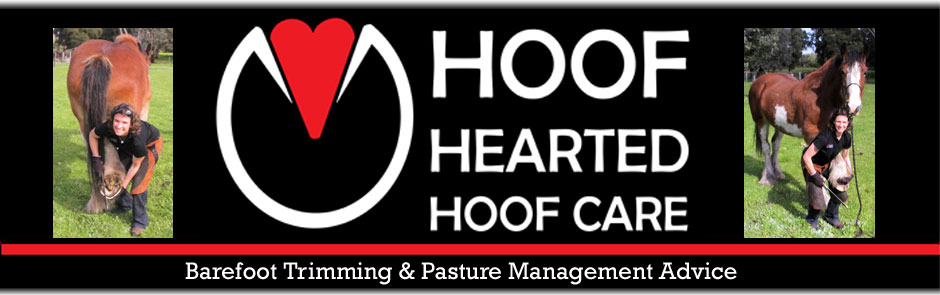 Hoof Hearted Hoof Care