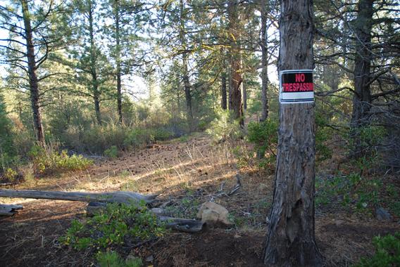 Klamath Falls Forest Estates