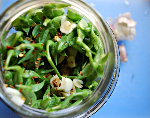 Quick & Easy Pickled Sugar Snap Peas - The Art of Preserving, made ...