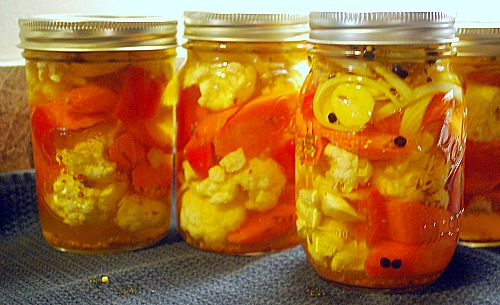 The Pickled Cauliflower recipe made 8 pints like this!