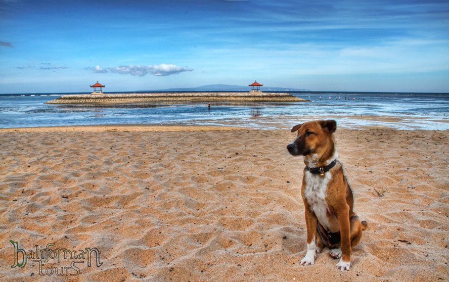 Bali Sanur Beach travel tips