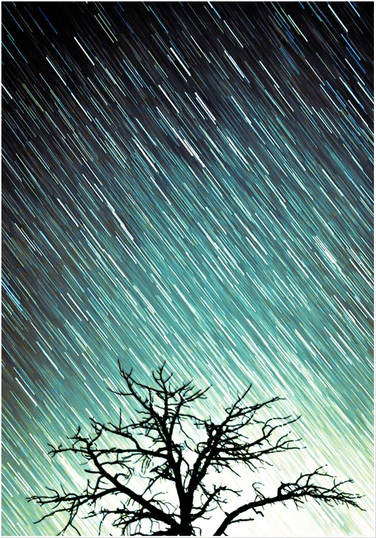Perseids Meteror Shower Flagstaff Northern Arizona Long Exposure Stars