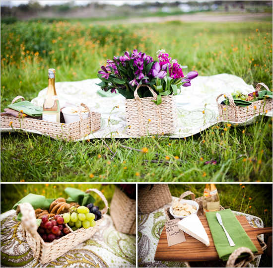 Romantic Backyard Picnic Ideas : Picnic in Edmonton  City and Baby  What to Do in Edmonton With Kids