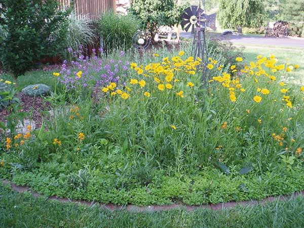 Genial Design Idea: City Wildflower Gardens   Tree Care Services Boston: Tree  Services For You   General Landscape Corp