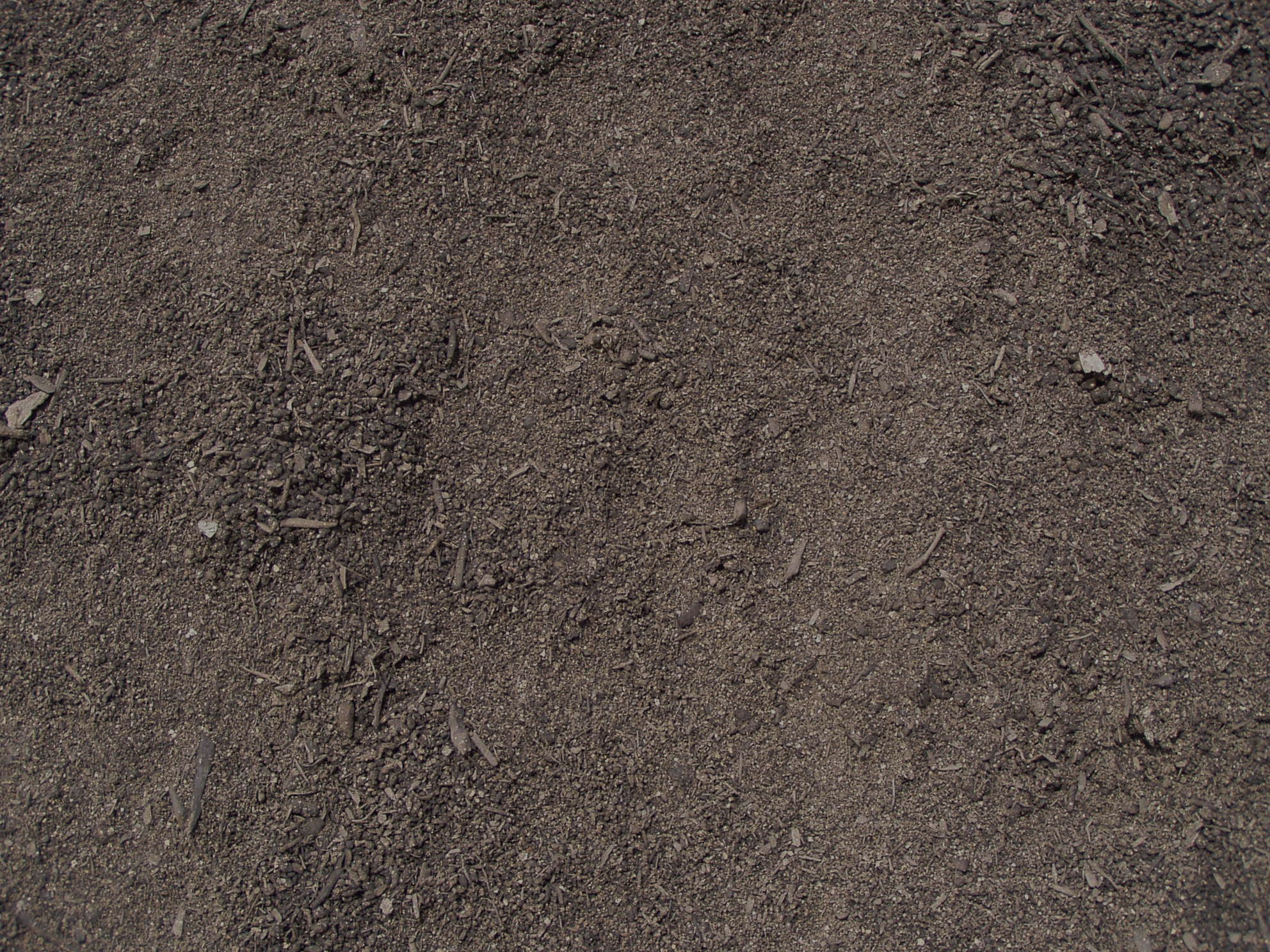 Importance of soil to plants tree care services boston for Dirt and soil