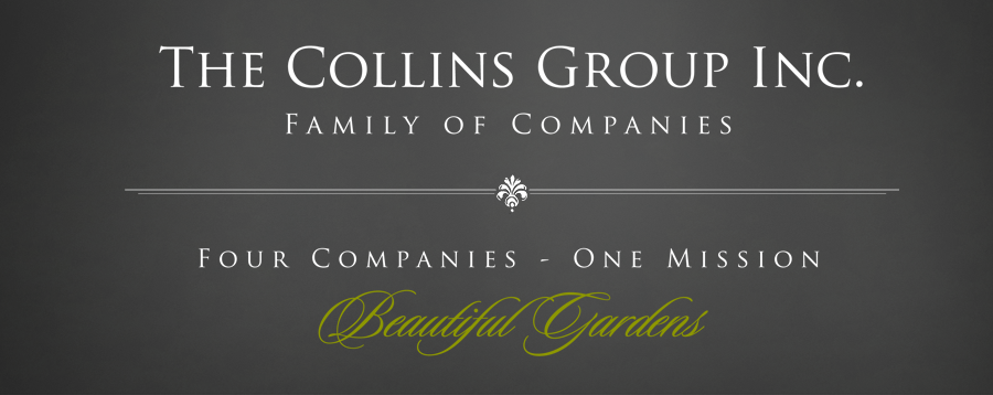 The Collins Group, Inc.