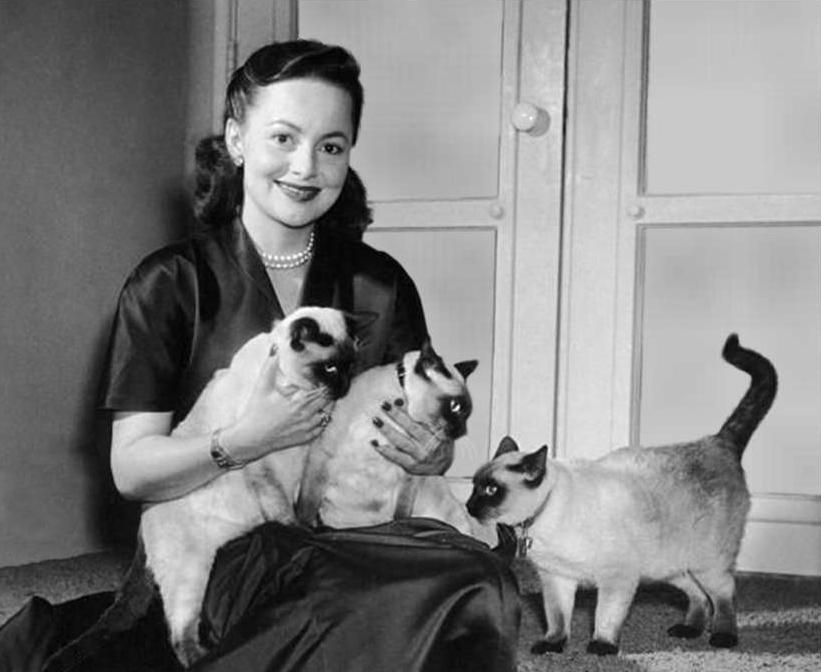 Olivia De Havilland The Heiress heiress Catherine Sloper