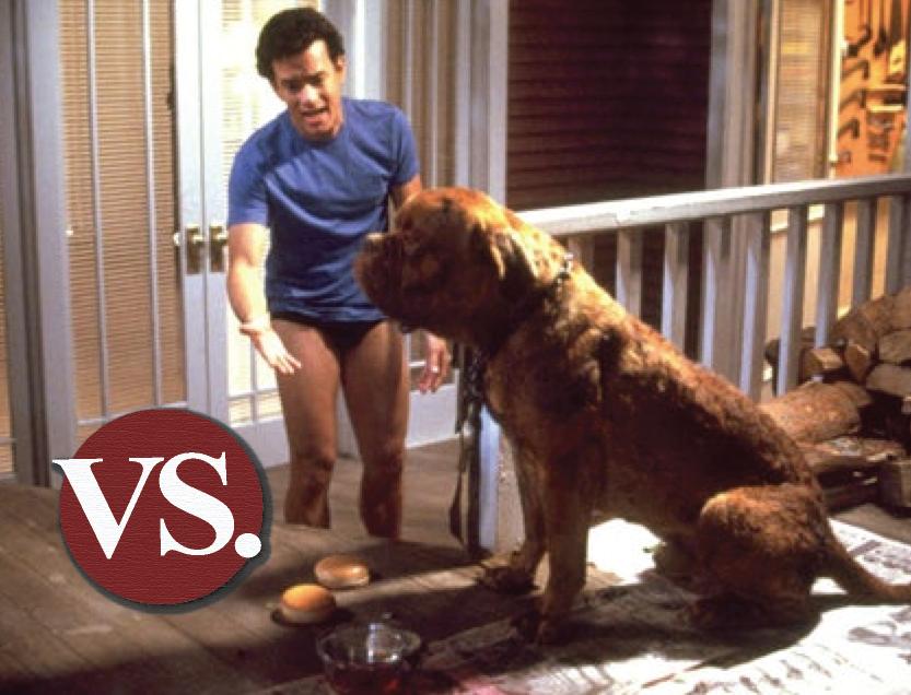 beauty vs beast a dog eat dog world blog the film