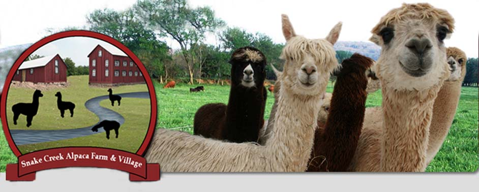 Snake Creek Alpaca Farm Bed & Breakfast