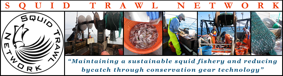 Squid Trawl Network
