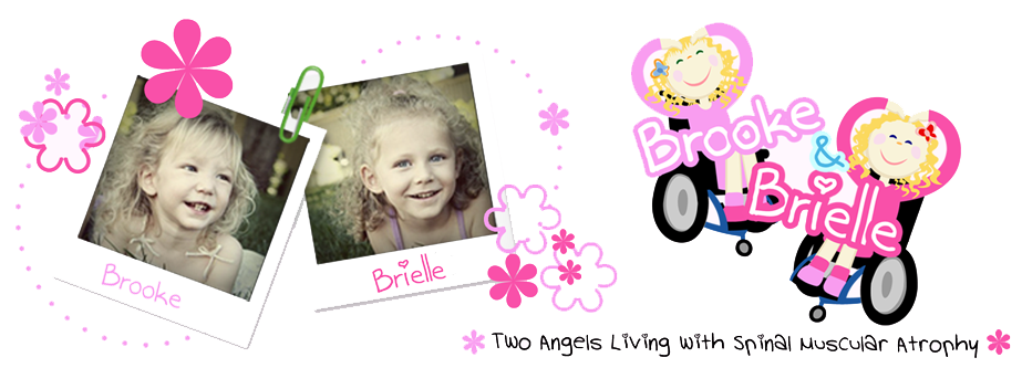 Welcome to Brooke and Brielle's Blog!