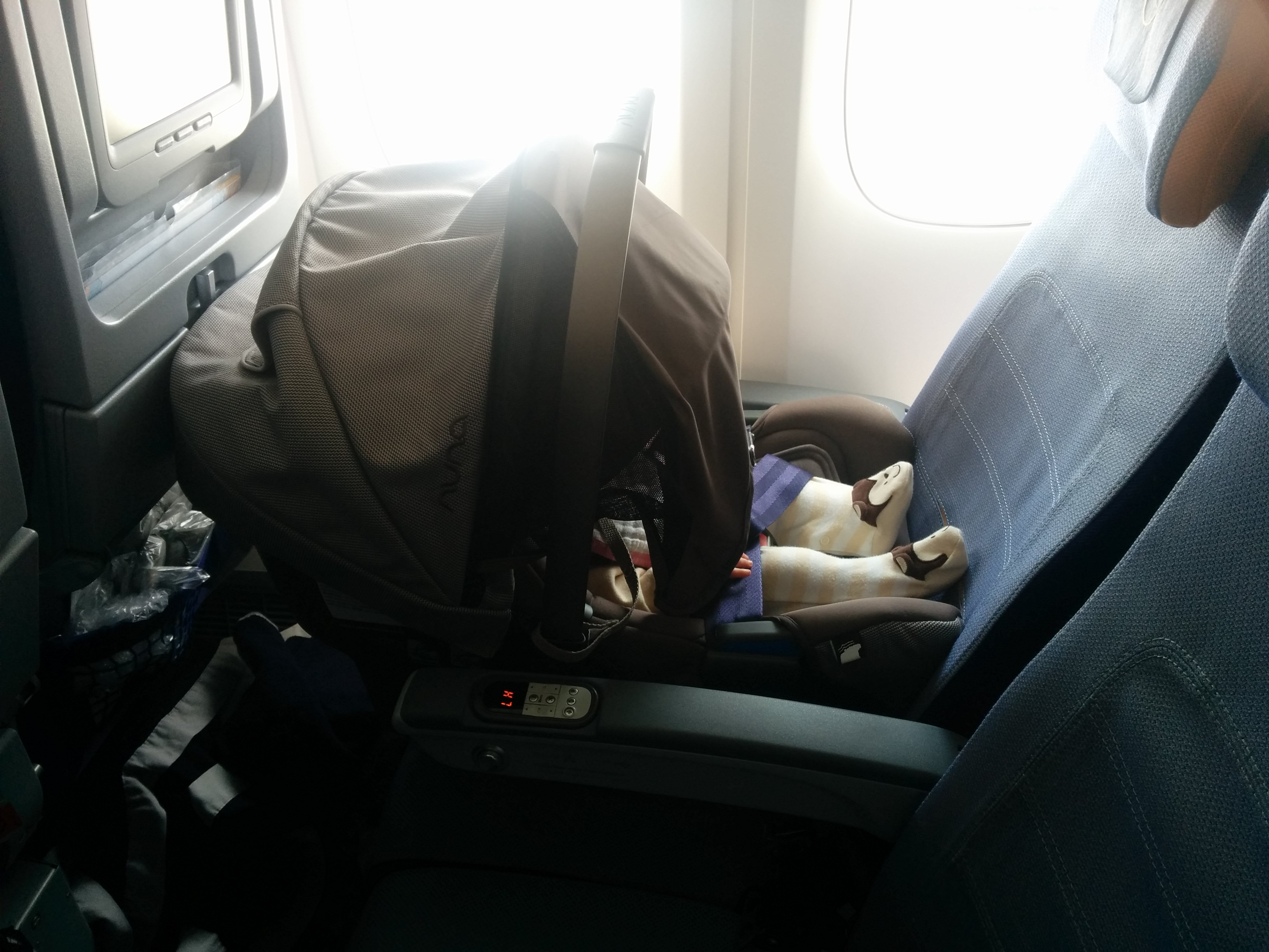 Photo Right Luna Securely Fastened On Lufthansa Flight 422 From FRA To BOS Boeing 747 400 Economy Class