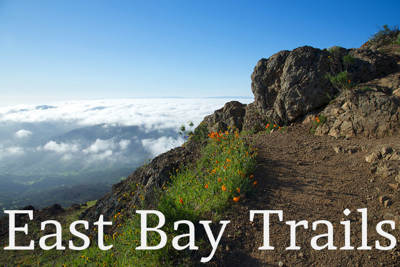 East Bay Trails