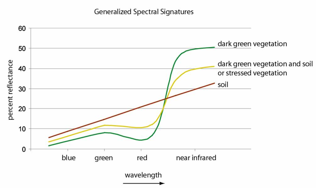 Generalized spectral signatures for vegetation and soil