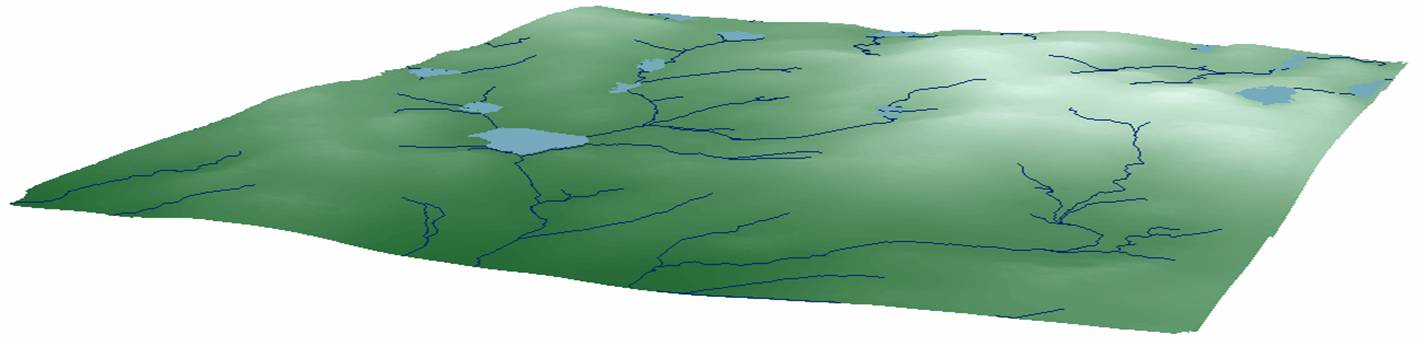 LiDAR elevation GIS 3D rendering with flow lines and sinks
