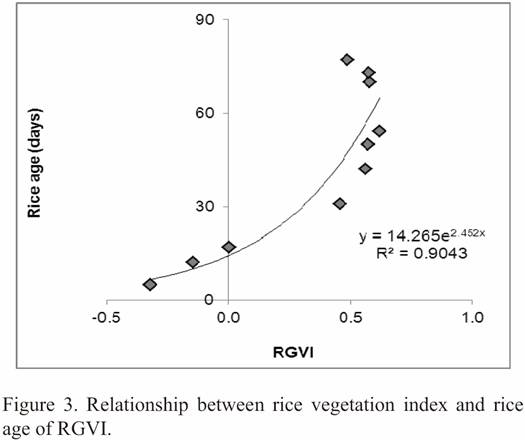 Rice Growth Vegetation Index (RGVI)